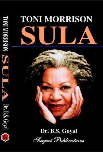 toni morrisons sula black on white violence The bluest eye is a novel written by toni morrison in 1970 morrison, a single mother of two sons, wrote the novel while she taught at howard university.